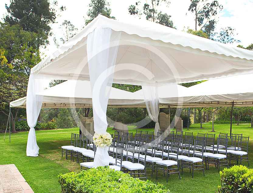 Perfect Choice For Your Wedding